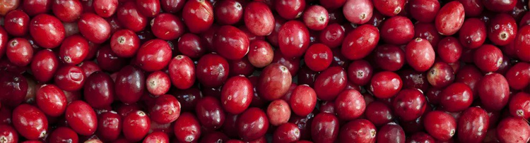 Cranberries and blueberries – why certain fruit extracts could provide the key to fighting tooth decay